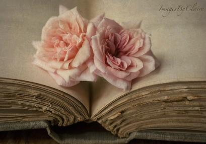 livre-et-roses