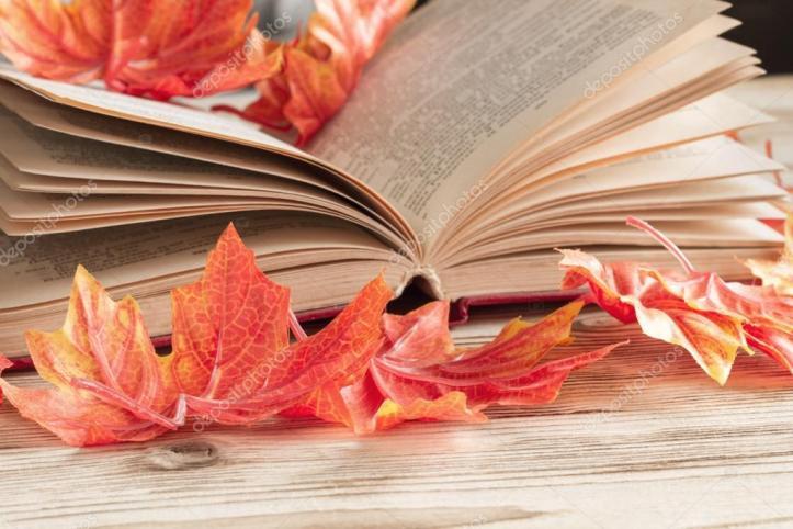 depositphotos_123096336-stock-photo-an-open-book-lies-on.jpg