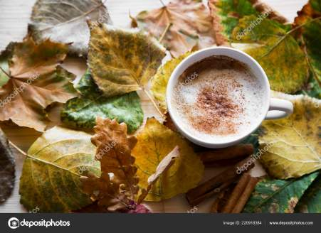 Autumn coffee cup, cappuccino with dried leaves , top view