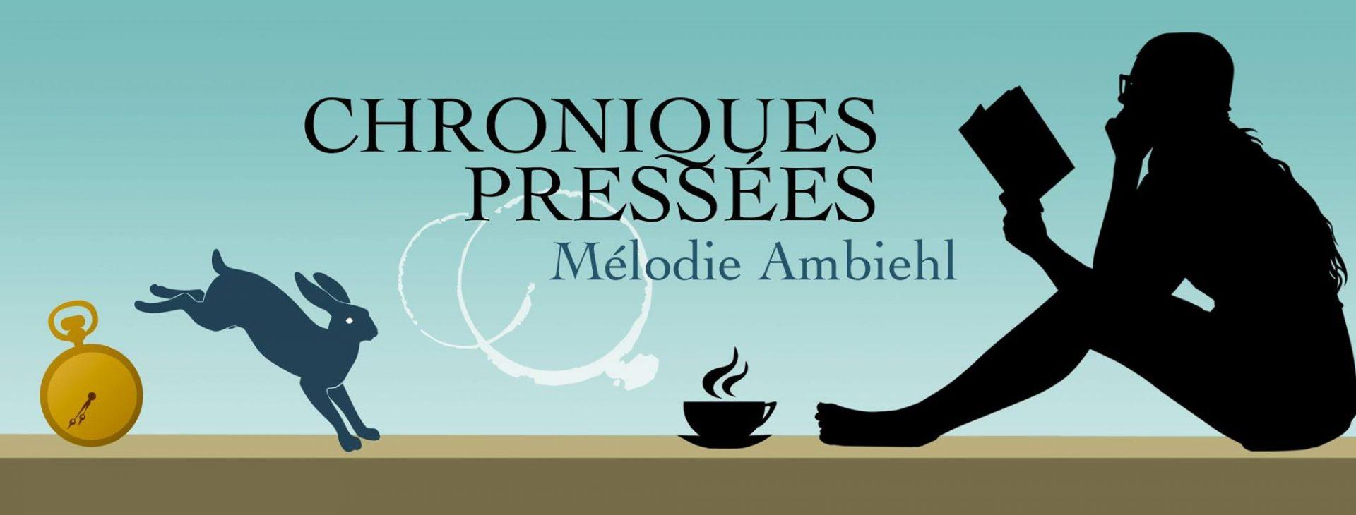 Les Chroniques Pressées d'une prof de français