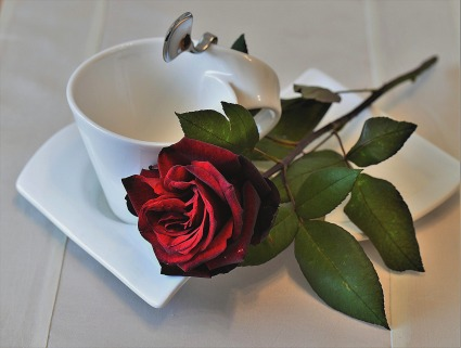 rose-2787809_1920